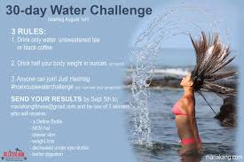 Water Challenge No Excuse Water Challenge 2015 Results No Excuse