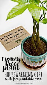 Good Housewarming Gifts 10 Best Housewarming Ideas Images On Pinterest Gifts Homemade