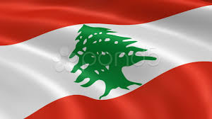 What Tree Is On The Lebanese Flag Stock Video Lebanese Flag In The Wind 10578039 Pond5