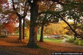Mn Landscape Arboretum by Arboretum Fall Sunrise Mn Landscape Arboretum 2660