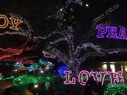 zoo lights houston prices holiday bucket list houston christmas events more houston