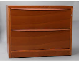 Plastic Storage Cabinets With Doors by Cabinet Storage Cabinet With Lock Faithful File Storage Shelves