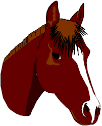 horse head line drawing clipart cliparts and others art inspiration