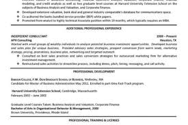 Financial Advisor Resume Examples by Computer Information Systems Resume Examples Information Systems