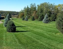 Cost Of Landscape Lighting Estimating Landscape Costs Cost Factors Of Lawn Care Estimating