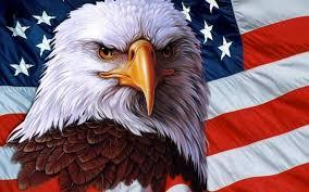 Bald Eagle On Flag American Bald Eagle Wallpaper