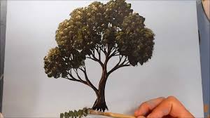 how to paint a tree in acrylics youtube