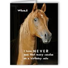Horse Birthday Meme - many candles over the hill funny horse card funny horses horse