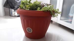 is a self watering pot viable for indoor gardening in the long