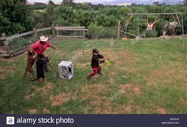 backyard cricket stock photos u0026 backyard cricket stock images alamy