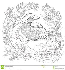 graceful seamless floral pattern coloring page stock vector