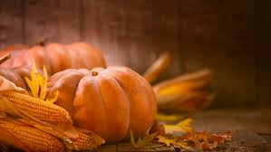 happy thanksgiving background stock footage