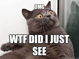 Omg Cat Meme - omg wtf did i just see conspiracy cat quickmeme