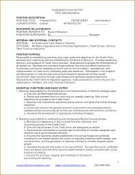 Ceo Resume Sample Doc by Sample Ceo Job Description Sample Resume Format