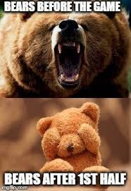 Bear Memes - fans can t bear it anymore find funny ways to vent online