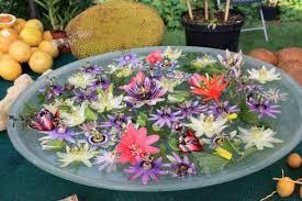les fleurs comestibles en cuisine voici une liste de 42 fleurs comestibles à déguster