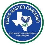 Fall Garden Plants Texas - diane u0027s texas garden fall vegetable planting