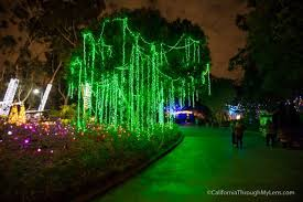 when do the zoo lights end la zoo lights christmas lights at the los angeles zoo california
