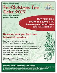 christmas tree pre sale begins loma vista farm