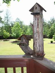 Cool Bird House Plans Bird Houses Cool Idea Maybe My Fence Line Will Work For This Brown