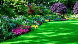 garden design garden design with flower garden wallpapers sky hd