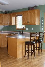 paint colors that compliment golden oak cabinets nrtradiant com