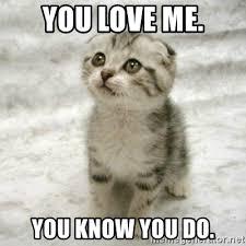 Love Me Meme - you love me you know you do can haz cat meme generator