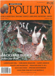 australasian poultry magazine bellsouth poultry equipment