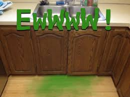 how to get rid of new kitchen cabinet smell getting rid of the musty smell from your cabinets n