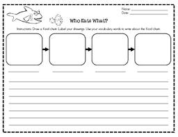food chain writing activity english u0026 spanish by ana a tpt