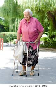 elder walker elderly walker stock images royalty free images vectors