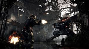 top first person shooter games for pc