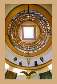 lightwell library skylight with a lofted circular bookcase