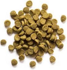 grain free ferret diet zupreem