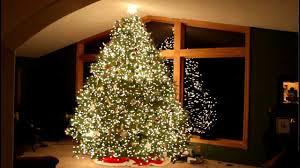 gangnam style christmas tree light show psy wawra 2012 hd