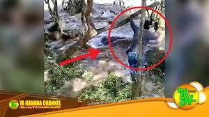 vidio film ombak lagi asyik merekam video pria ini nyaris terseret ombak bono sungai