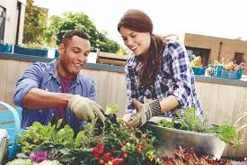 Urban Gardening Tips 10 Tips For Urban Gardening Westsidetoday Com