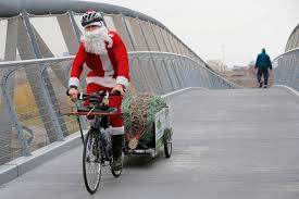 christmas tree delivery boston christmas tree delivery evergreen delivery boston