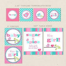 aqua u0026 pink bird printable baby shower decorations u2013 lil u0027 sprout