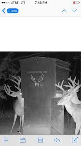 Boss Deer Blinds Prices Dixie Deer Blinds By Tmg Ent Home Facebook
