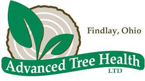 advanced tree health ltd findlay advanced tree health ltd