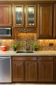 Kitchen Design Oak Cabinets by Kitchen Inspiring Kitchen Design With Dark Oak Kitchen Cabinet