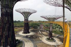 gardens by the bay supertrees of singapore prepares for opening