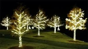 curb appeal lawn care u0026 landscaping christmas light shows