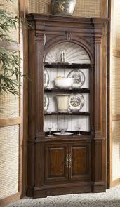 Cabinet For Kitchen Corner Curio Cabinet For Kitchen Tags 35 Frightening Corner
