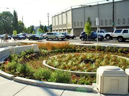 San Francisco Urban Garden - bioretention rain gardens sf better streets