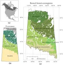 Canada Wildfire Minneapolis by Forests Free Full Text Effects Of Lakes On Wildfire Activity