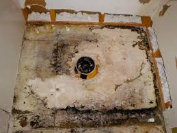 Removing Mold From Bathroom Ceiling How To Get Rid Of Mold In Shower Orange Mold