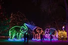 denver zoo lights hours zoo lights 2017 preview weekend pulp