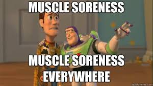 Sore Memes - ah yes today its all i can feel d day after a good workout